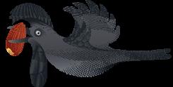 Amazonian_Umbrellabird_2071_Mork_70